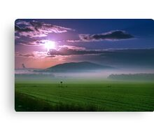 Beautiful sunset over green field. Canvas Print