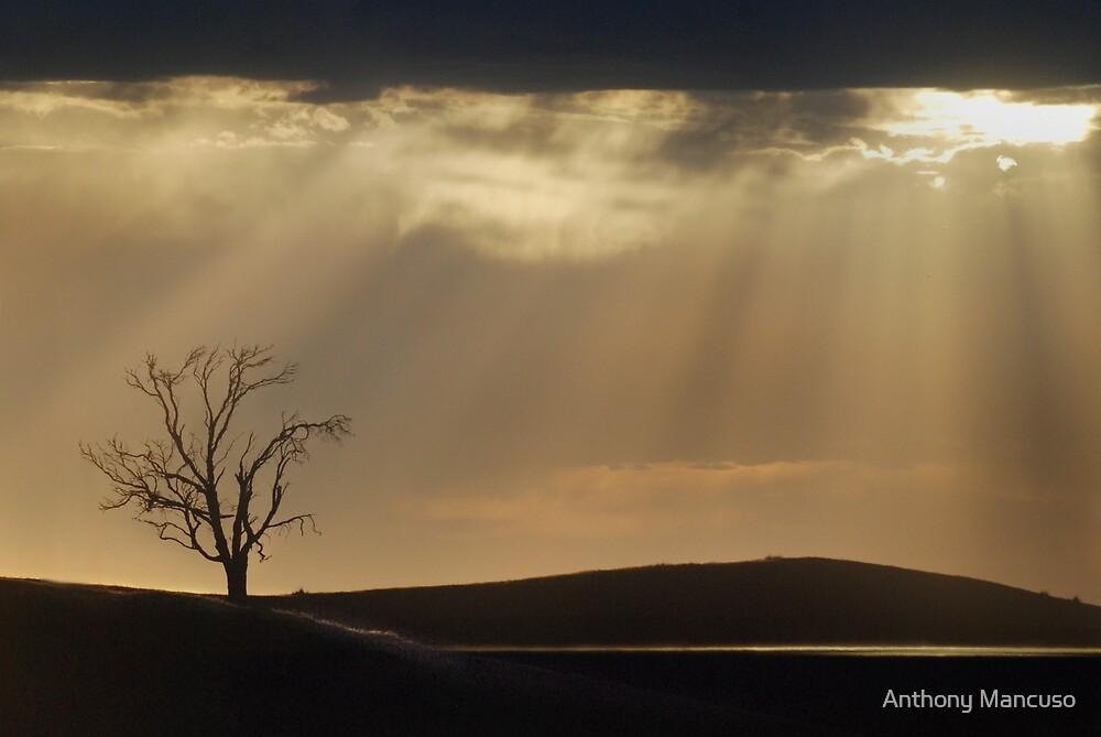 glory by Anthony Mancuso