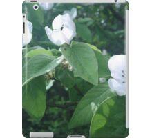 fruit tree iPad Case/Skin