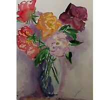 Mary Bendeich's roses (from the garden) Photographic Print