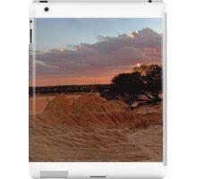 Desert landscapes iPad Case/Skin