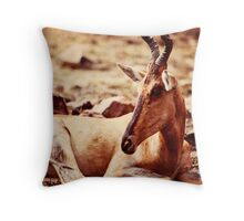 African Wildlife Red Hartebeest Decor Throw Pillow