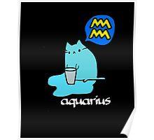 Aquarius T-shirt Poster