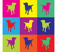 Pop art in the dogs Photographic Print