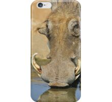Warthog Pleasure - Quench of Life and Joy iPhone Case/Skin