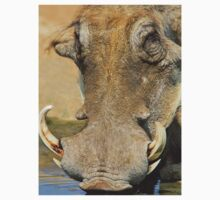 Warthog Pleasure - Quench of Life and Joy Kids Clothes