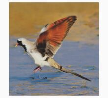 Blur of Flight - Namaqua Dove - African Wildlife Kids Tee