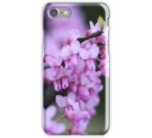 Red Bud Flowers iPhone Case/Skin