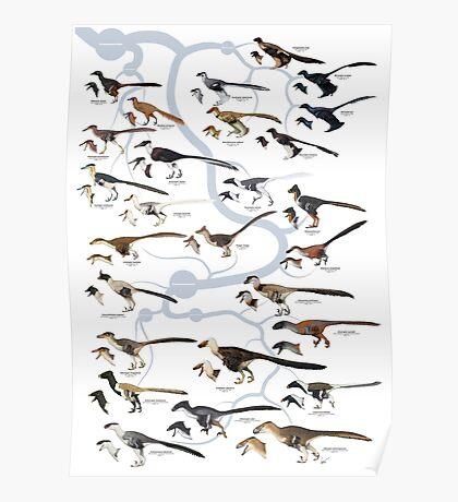 Dromaeosaurid Dinosaurs (version 1) Poster