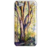 Catching the Morning Rays iPhone Case/Skin