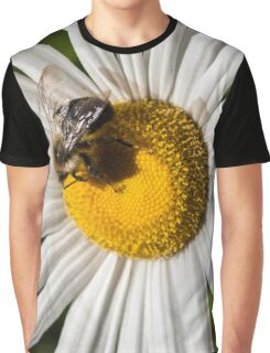 Bee on Becky Daisy Graphic T-Shirt