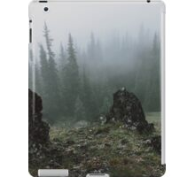 Olympic Peninsula Fog iPad Case/Skin
