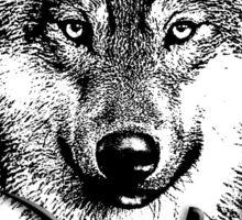 Wolf 6 Sticker