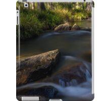 Glenroy, river lett iPad Case/Skin