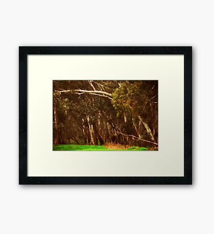 Beautiful Arches Framed Print