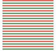 Red, green and white stripes, fun Christmas colours Photographic Print