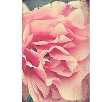 Folds of Beauty Photographic Print