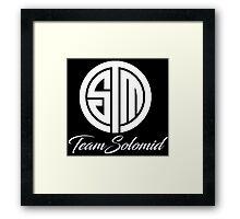 TSM Framed Print