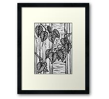 Birch Ink Drawing -Giclee Print of Hand Painted Original Art  Framed Print
