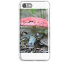 Killbear Provincial Park Treasures iPhone Case/Skin