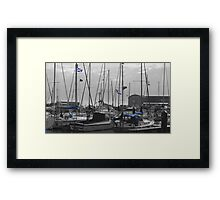 Flying The Flag Framed Print
