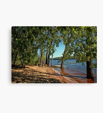 St Croix River Shoreline Canvas Print