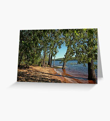 St Croix River Shoreline Greeting Card