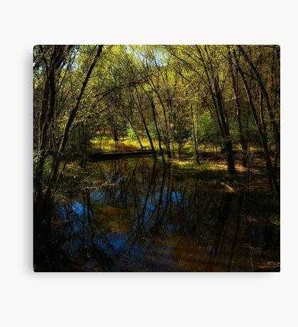 Autumn at Afton State Park Canvas Print