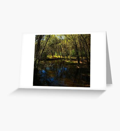 Autumn at Afton State Park Greeting Card