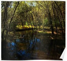Autumn at Afton State Park Poster