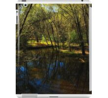 Autumn at Afton State Park iPad Case/Skin
