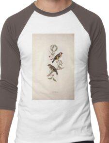John Gould The Birds of Europe 1837 V1 V5 196 Goldfinch Men's Baseball ¾ T-Shirt