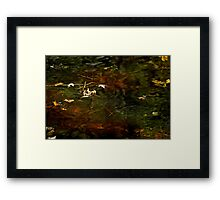 Abstract of the St Croix River 01 Framed Print