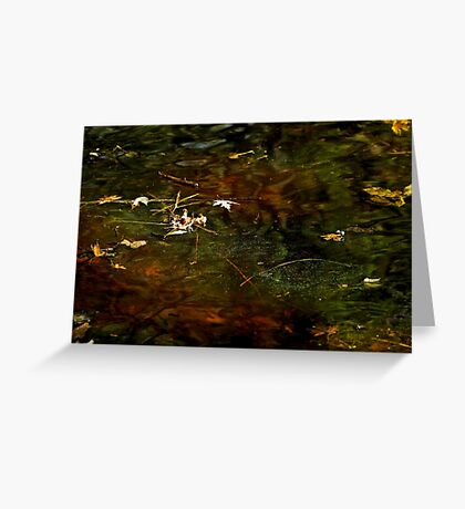 Abstract of the St Croix River 01 Greeting Card