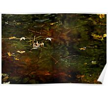 Abstract of the St Croix River 01 Poster