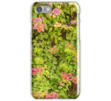 Wall of Colors iPhone Case/Skin