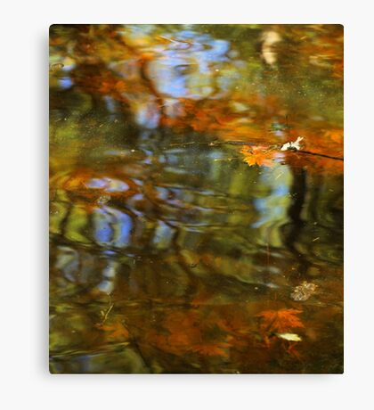 Abstract of the St Croix River 02 Canvas Print