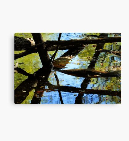 Abstract of the St Croix River 03 Canvas Print