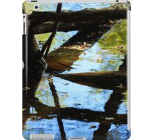 Abstract of the St Croix River 03 iPad Case/Skin