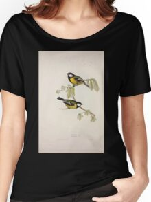 John Gould The Birds of Europe 1837 V1 V5 150 Great Tit Women's Relaxed Fit T-Shirt
