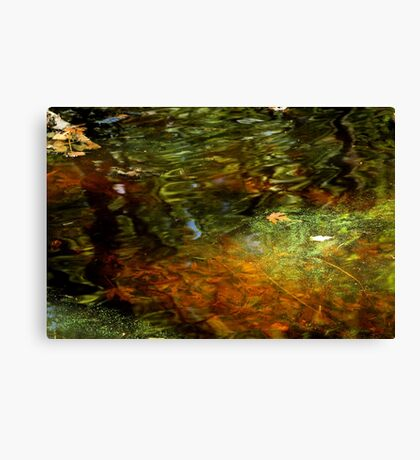 Abstract of the St Croix River 04 Canvas Print