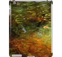 Abstract of the St Croix River 04 iPad Case/Skin