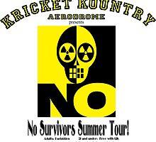KRICKET KOUNTRY AERODROME: NO SURVIVORS TOUR! by Kricket-Kountry