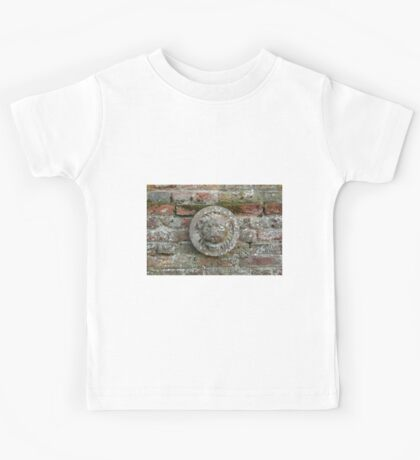 Lion Plaque on Wall Kids Tee