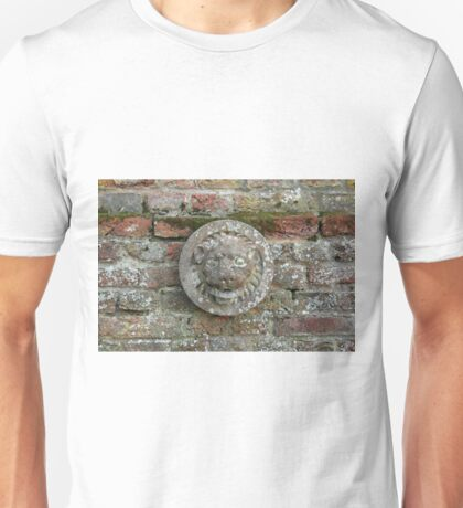 Lion Plaque on Wall Unisex T-Shirt