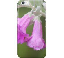 Texas Sage iPhone Case/Skin