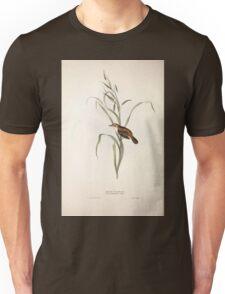 John Gould The Birds of Europe 1837 V1 V5 110 Sedge Warbler Unisex T-Shirt