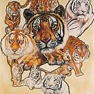 Tiger Haven by BarbBarcikKeith