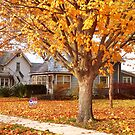 Fall Comes to Mid-America by Nadya Johnson