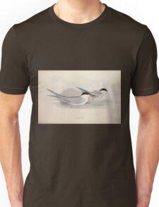 John Gould The Birds of Europe 1837 V1 V5 417 Common Tern Unisex T-Shirt